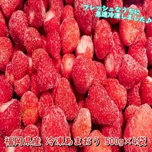 【2kg(500g×4袋)】福岡県産 冷凍あまおう