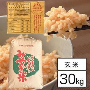 【30kgx1袋】宮城県産ひとめぼれ(特別栽培米・令和元年産・JAみやぎ登米・1等玄米)