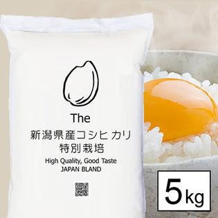 【5kgx1袋】 特別栽培米 令和元年産 新潟県産コシヒカリ 白米
