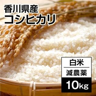 【10kg】香川県産コシヒカリ白米  令和元年度産《備蓄にも最適》