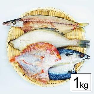 40位 【島根直送】国産・無添加・規格外干物詰め合わせ1kg