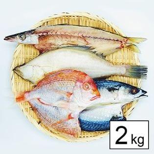 【島根直送】国産・無添加・規格外干物詰め合わせ2kg