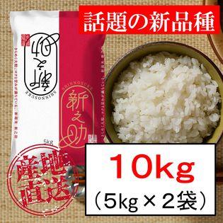 【10kg】新潟米 新之助 令和2年産