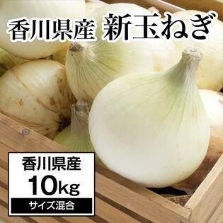 【約10kg】新たまねぎ 香川県産  旬の採れたて玉ねぎをお届け