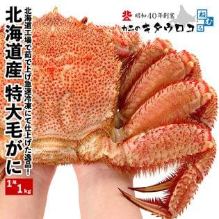 【1尾1kg】北海道産 特大毛がに