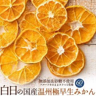 【60g】白日の国産温州極早生みかん
