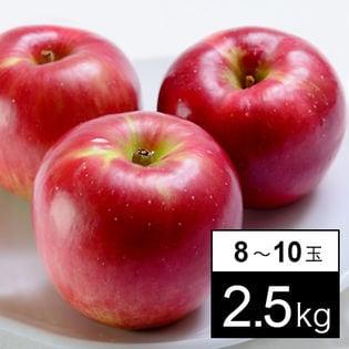 【計2.5kg箱】旬の林檎のジョナゴールド 8-10玉