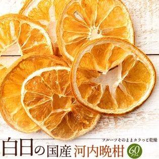 【60g】白日の国産河内晩柑