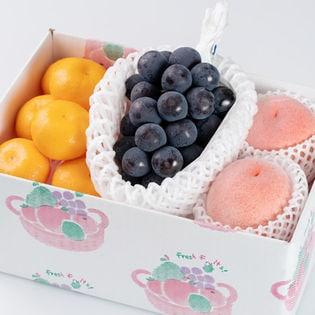 フルーツセット(葡萄・桃・ハウス蜜柑)