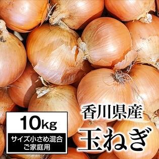 【約10kg】香川県産 たまねぎ  旬の採れたて玉ねぎ(ご家庭用・サイズ小さめ不揃い)