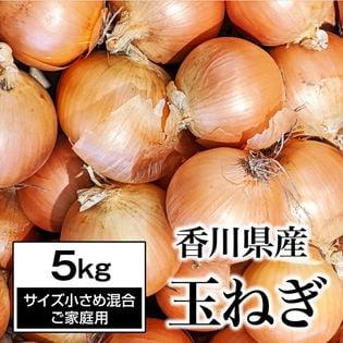 【約5kg】香川県産 玉ねぎ  旬の採れたて玉ねぎ(ご家庭用・サイズ小さめ不揃い)