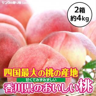 【計4kg(6-9玉入×2箱)】香川県産 桃(もも) 四国最大の桃の産地 飯山の桃