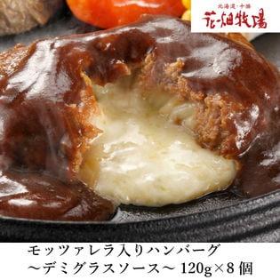 【120g×8個】花畑牧場モッツァレラチーズ入りハンバーグ(デミグラスソース)
