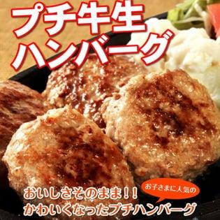 プチ牛生ハンバーグ 40g×24個 ー大阪堺市地域物産応援特集ー