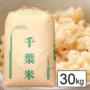 【30kg】 令和2年産 千葉県産 ふさおとめ 1等玄米30kgx1袋