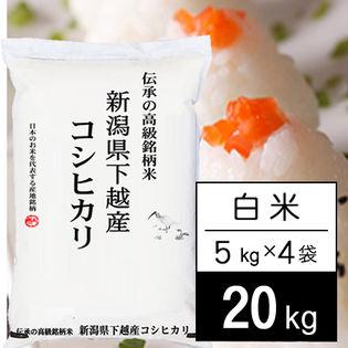 【20kg】 越後の米 令和2年産 新潟県産 コシヒカリ白米5kgx4袋