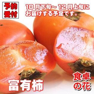 【予約受付】10/25~順次出荷【10kg】富有柿(和歌山・奈良)※ご家庭用ー傷・擦れあり