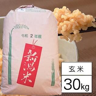 【30kg】 令和2年産 新潟県中越産 新之助 1等 玄米 30kgx1袋