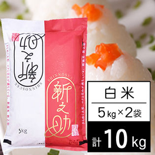 【10kg】 令和2年産 新潟県中越産 新之助 白米 5kgx2袋