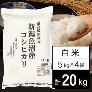 【20kg】 JA十日町 令和2年産 新潟県魚沼産コシヒカリ 白米 5kgx4袋