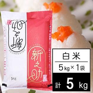 【5kg】 令和2年産 新潟県中越産 新之助 白米 5kgx1袋