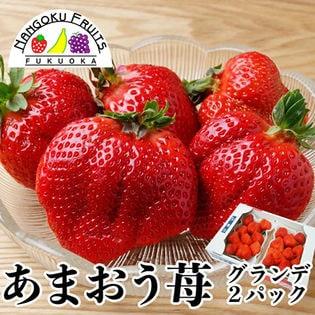 【約250g×2パック】福岡限定いちご・あまおう【お徳用】