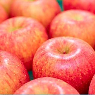 【2.5kg箱(8-10玉)】果物屋さんが選んだ旬の赤い林檎2.5kg箱