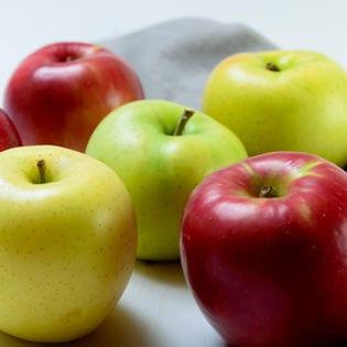 【2.5kg箱(8-10玉)】果物屋さんが選んだ旬の『赤or青』林檎2.5kg箱