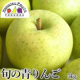 【5kg箱(16-20玉)】果物屋さんが選んだ旬の『青』林檎5kg箱