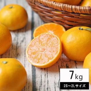 【7kg(中玉2S-2Lサイズ込み)】吉田みかん  (ご家庭用、葉傷・枝傷・黒点等あり)