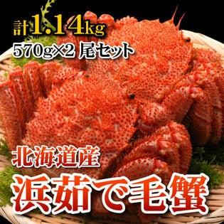 【計1.14kg(570g×2尾)】カニなら浜茹で毛蟹
