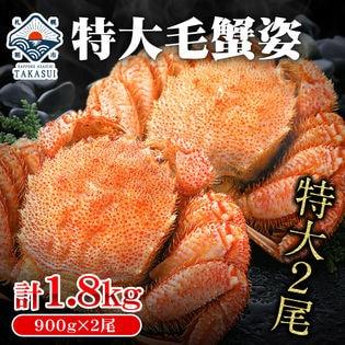【計1.8kg(900g×2尾)】】特大毛蟹 2尾
