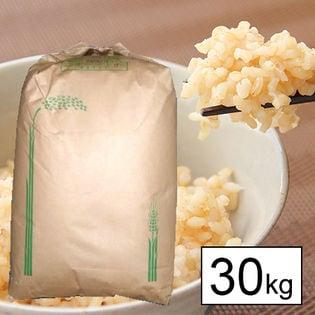 【30kg】 令和2年産 山梨県産あさひの夢 1等 玄米 30kgx1袋