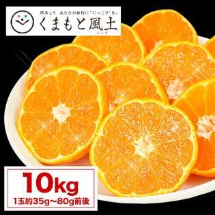 【予約受付】11/27~順次出荷【1セット10kg】熊本みかん(ご家庭用)