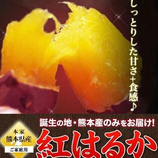 【約3kg】紅はるか(ご家庭用)熊本県産をお届け!