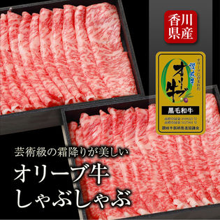 【約500g(2箱×250g)】香川県産 讃岐オリーブ牛しゃぶしゃぶ 芸術級の霜降りが美しい