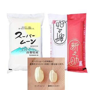 【10kg】 令和2年産 大粒のお米 対決 新之助 対 スーパームーン 各5kg
