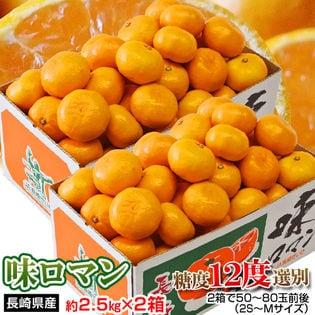 【5kg(2.5kg×2箱)】長崎県産 極甘みかん 味ロマン