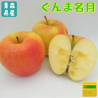 【約5kg】青森県産林檎 ぐんま名月 ※ご家庭用