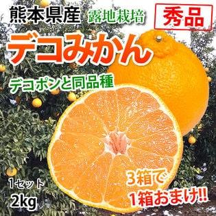 【予約受付】2/11~順次配送【約2kg】熊本県産 秀品 デコみかん