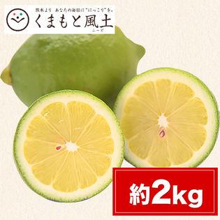 【約2kg】熊本県産レモン ご家庭用