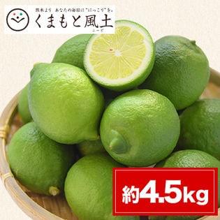 【約4.5kg】熊本県産レモン ご家庭用