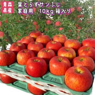 【約10kg】青森県産林檎 葉とらずサンふじ ※ご家庭用