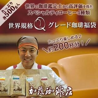 【計2kg(500g×4種)】[加藤珈琲店]世界規格Qグレード珈琲飲み比べ<挽き具合:中挽き>