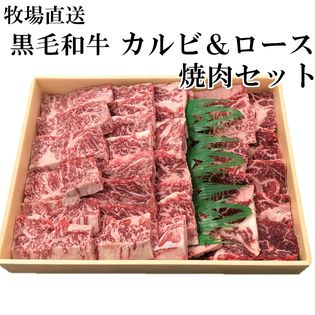 【700g】牧場直送! 九州産 黒毛和牛焼肉セット【カルビ&ロース】