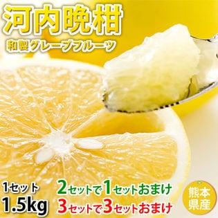 熊本県産 河内晩柑(ご家庭用、傷あり)約1.5kg