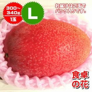 【Lサイズ2玉】宮崎完熟マンゴー