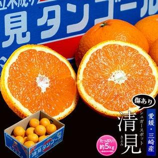 【風袋込約5kg(M-2Lサイズ)】愛媛県三崎産 清見オレンジ(ご家庭用)