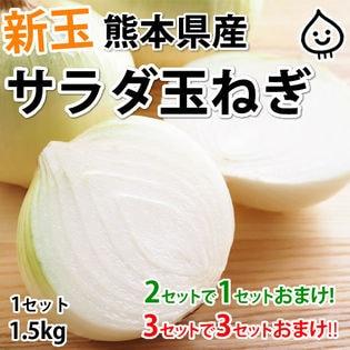 【予約受付】3/25~順次配送【約1.5kg】熊本県産 サラダ玉ねぎ