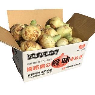 【5kg箱×2】淡路島の極味玉ねぎ 新玉ねぎ 極早生
